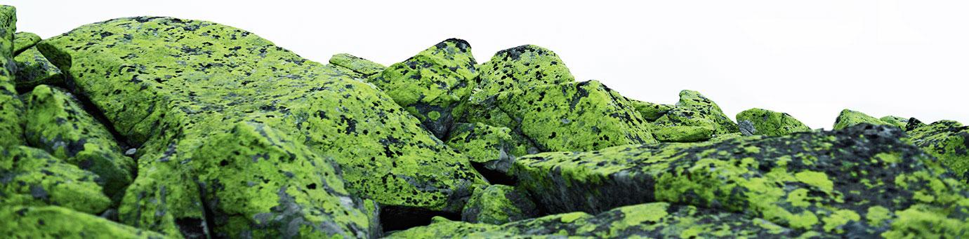 Poly_1_Landscape_Stones_Web