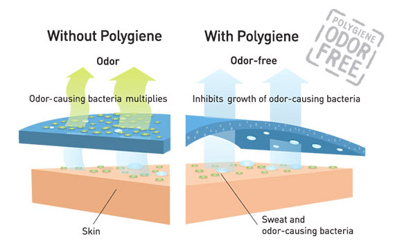 Poly_How-it-works_Illustration_150604_570x358